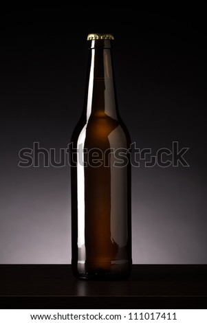 Bottle of beer - stock photo
