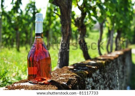 Bottle of champagne against vineyards - stock photo