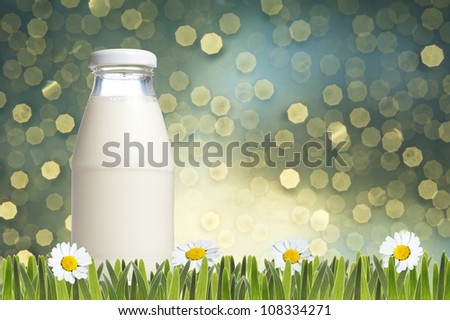 Bottle of milk with green grass and daisies flower with light bokeh background