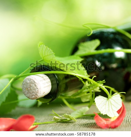 Bottle of red Wine and grape leaves - stock photo