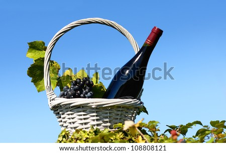 Bottle of red wine and grapes in basket - stock photo