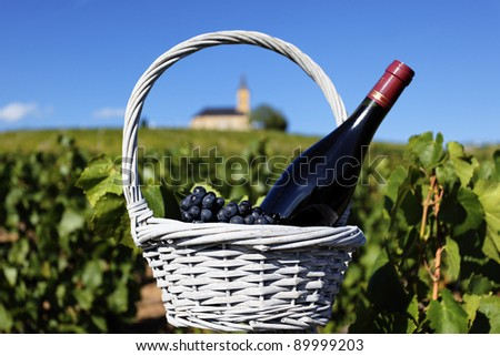 bottle of red wine and grappes in basket in France - stock photo