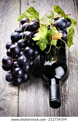 Bottle of red wine with fresh grape and grapevine - stock photo