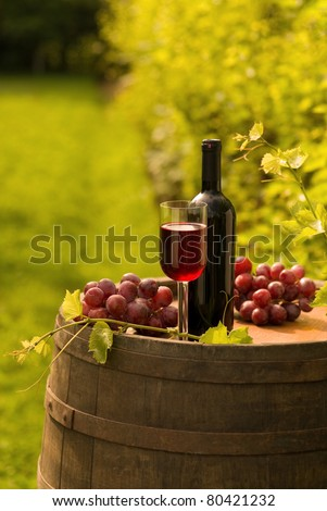 Bottle of red wine with wineglass and grapes in vineyard - stock photo