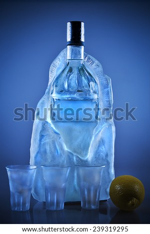 Bottle of vodka in a big ice cube - stock photo