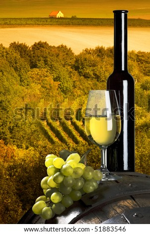 bottle of white wine and vineyards in the sunset - stock photo