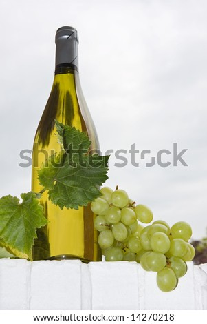 Bottle of white wine with grapes and vine leaves