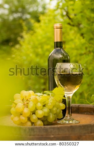Bottle of white wine with wineglass and grapes in vineyard - stock photo