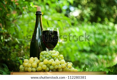 bottle of wine and fresh green grapes in the garden