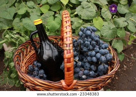 Bottle of wine and grapes in basket on the ground - stock photo