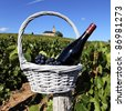 bottle of wine and grappes in basket in France - stock photo