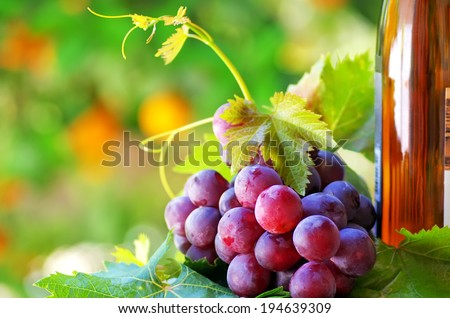 bottle of wine with grapes - stock photo