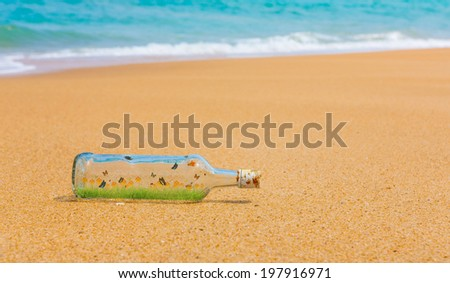 Bottle with Fresh spring green grass and butterfly inside on a beach - stock photo