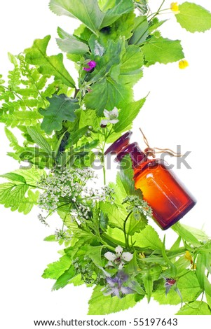bottle with homeopathy balm and wood plants - stock photo