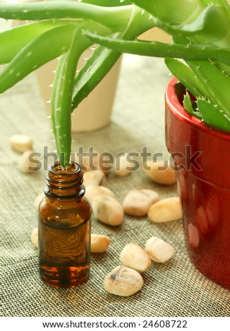 Bottle with oil of aloe vera and stones - stock photo