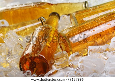 Bottles of beer lying in the ice. Close view. - stock photo
