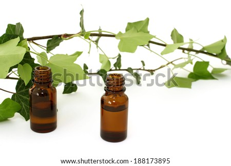 Bottles of essential oil and branch of ivy isolated on white background  - stock photo