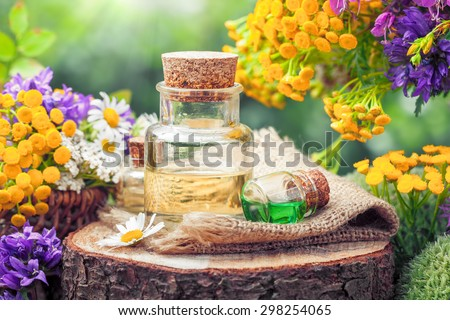 Bottles of essential oil or potion, healing herbs and wildflowers. Herbal medicine. - stock photo