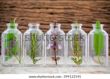 Bottles of herb thyme ,basil flower ,rosemary ,parsley and sage leaf on wooden background.