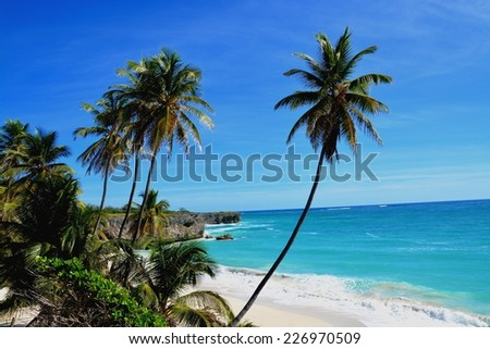 Bottom Bay, Barbados. Bottom Bay is one of the most beautiful beaches on the Caribbean island of Barbados. It is a tropical paradise with palms hanging over turquoise sea  - stock photo