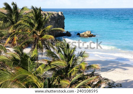 Bottom bay is one of the most beautiful beaches with white sand, palms and crystal water on the Caribbean island of Barbados. - stock photo