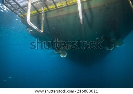 Bottom-side of boat anchored off Santa Barbara island, CA - stock photo