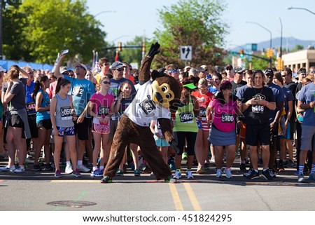 BOULDER, CO - May 25th, 2015: University of Colorado mascot Ralphie the Buffalo at the Bolder Boulder 10K race in Boulder, Co. The race is the largest timed race in the country.