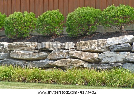 Boulder retaining wall at a commercial site with Inkberry Holly and Daylily - stock photo