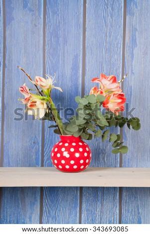 Bouquet Amaryllis in vase on blue background - stock photo