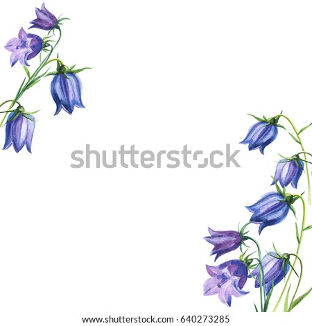 bouquet flowers bluebells blue watercolor illustration hand drawing wedding card or invitation with flowers