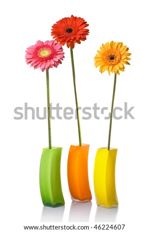 Bouquet from daisy-gerbera in glass vase isolated on white - stock photo