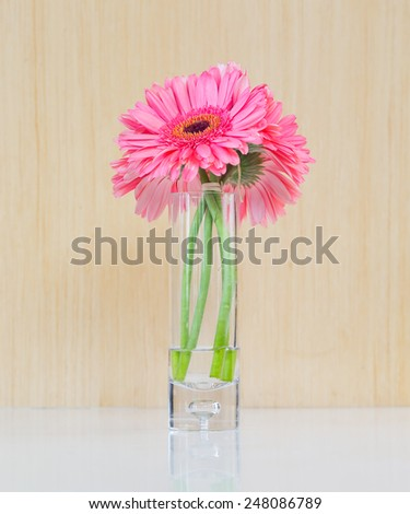 Bouquet from daisy-gerbera in glass vase isolated on wooden background - stock photo