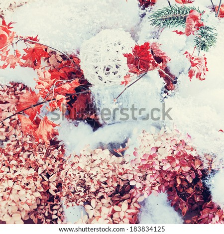 Bouquet from hydrangea, autumn leaves and snow with retro filter effect. - stock photo