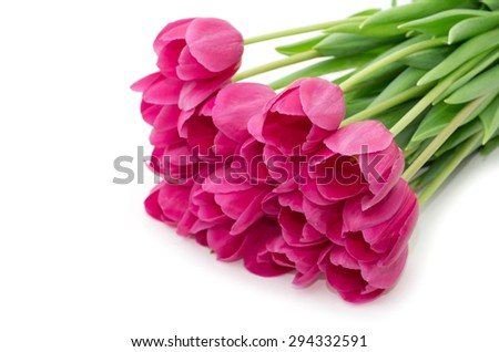 Bouquet from tulips flowers isolated on white - stock photo