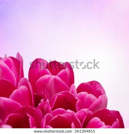 Bouquet from tulips flowers on retro background - stock photo