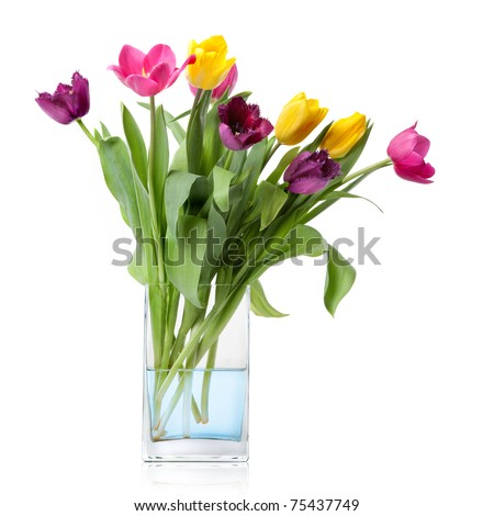 bouquet from tulips in glass vase isolated on white - stock photo