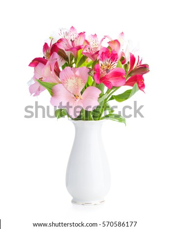 Bouquet alstroemeria flowers white porcelain vase stock photo bouquet of alstroemeria flowers in white porcelain vase isolated on white background mightylinksfo
