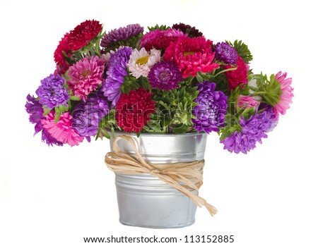 bouquet of aster flowers in vase  isolated on white background - stock photo