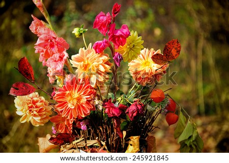 bouquet of autumn flowers - stock photo
