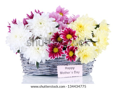 Bouquet of beautiful chrysanthemums in wicker basket isolated on white - stock photo