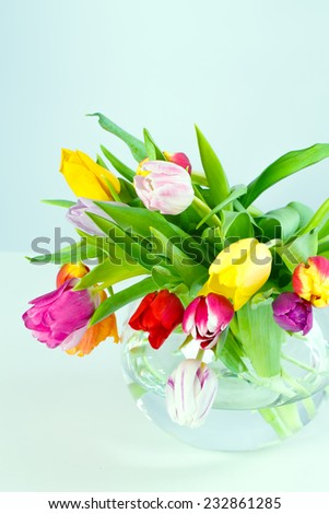 Bouquet of beautiful fresh pink tulips, spring, easter flowers. Greeting card, vertical with copy space. - stock photo