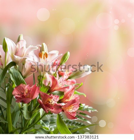 Bouquet of beautiful pink flowers with bokeh and copy space - stock photo
