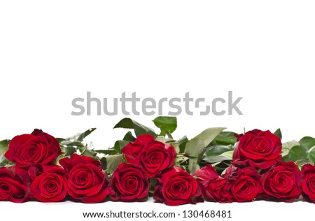 bouquet of beautiful red roses on a white background - stock photo