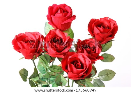 Bouquet of beautiful red roses on white background - stock photo