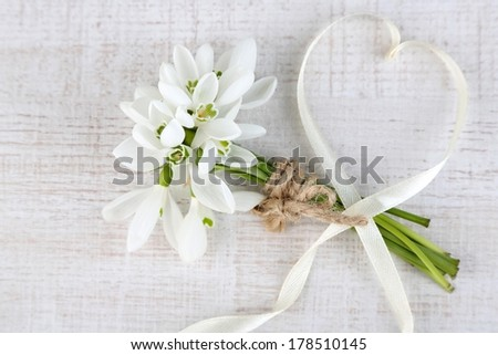 Bouquet of beautiful snowdrops on wooden background - stock photo