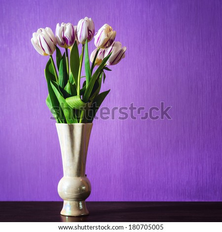 Bouquet of beautiful tulips flowers in vase on table in front of purple wall - stock photo