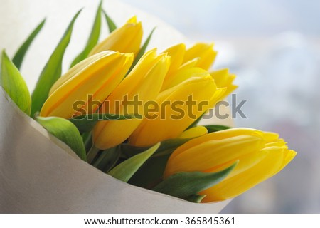 Bouquet of beautiful yellow tulips in wrapping