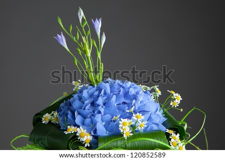 bouquet of blue hydrangea flowers, close-up view - stock photo