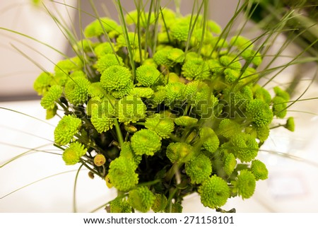 bouquet of chrysanthemums - stock photo