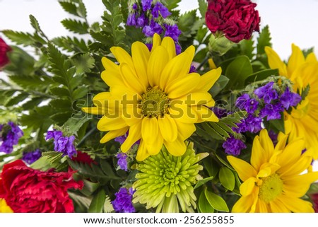 Bouquet of colorful spring flowers isolated on white featuring yellow daisies, red carnations and purple violets. - stock photo